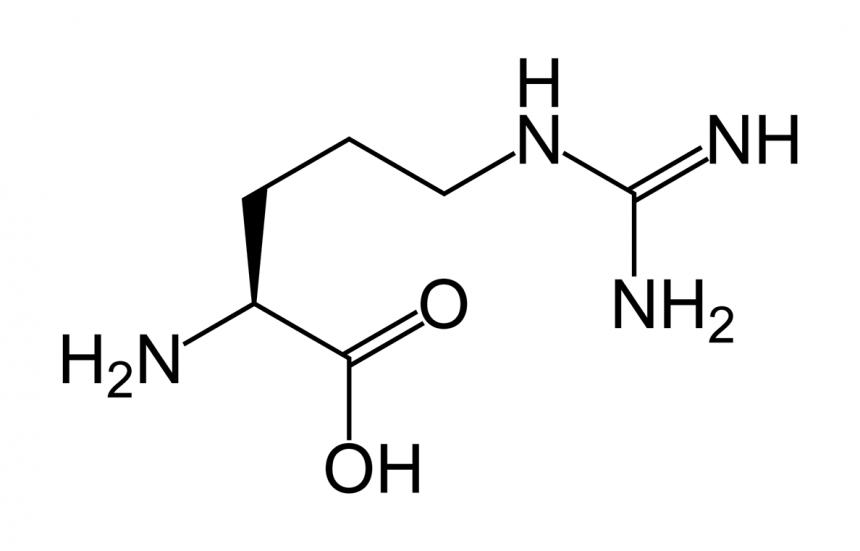 Can Amino Acids Improve Oral Health?